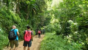 Ağva Kilimli Koyu Trekking Parkuru Nerede